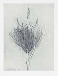 「春の冠」200x265mm