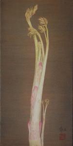 「独活図」20x40cm 2009年5月個展
