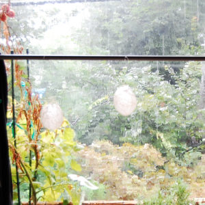 ひかりのつぶ 暴風雨に遭遇8.10日曜日